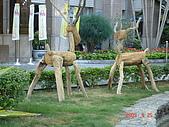 2009.04.24~27台北高峰會(一):0153.JPG