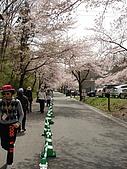 2006.04.17~21橫濱高峰會:DSC01039.JPG