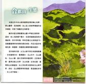 2015.01.09~12-台中新竹台北之旅(六):合歡山-0012.jpg