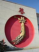 2007.11.01~04韓國濟州(二):DSC05595.JPG