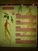 2007.11.01~04韓國濟州(二):DSC05596.JPG