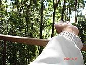 2008.05.22~27澳洲黃金海岸(一):DSC06539.JPG