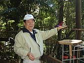 2008.05.22~27澳洲黃金海岸(一):DSC06544.JPG
