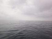 2014.06.16~18東北角海岸宜蘭賞鯨豚(五):賞鯨豚&龜山島-041.JPG