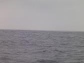 2014.06.16~18東北角海岸宜蘭賞鯨豚(五):賞鯨豚&龜山島-043.JPG