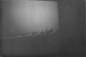 1972~世界新專(一):B攝影實習0011.jpg