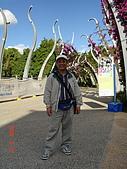 2008.05.22~27澳洲黃金海岸(一):DSC06393.jpg