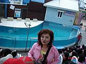 2009.04.24~27台北高峰會(一):0247.JPG