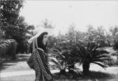 1972~世界新專(一):A攝影實習0017.jpg