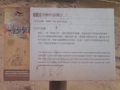 2014.06.16~18東北角海岸宜蘭賞鯨豚(二):福隆沙雕-061.JPG