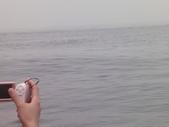 2014.06.16~18東北角海岸宜蘭賞鯨豚(五):賞鯨豚&龜山島-064.JPG