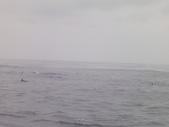 2014.06.16~18東北角海岸宜蘭賞鯨豚(五):賞鯨豚&龜山島-066.JPG