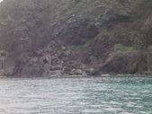 2014.06.16~18東北角海岸宜蘭賞鯨豚(五):賞鯨豚&龜山島-008.JPG