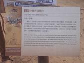 2014.06.16~18東北角海岸宜蘭賞鯨豚(二):福隆沙雕-065.JPG