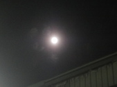 2016.08.08-混合檔照片:草莓月亮-0013.JPG
