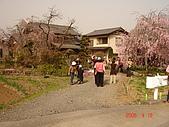 2006.04.17~21橫濱高峰會:DSC01052.JPG