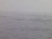 2014.06.16~18東北角海岸宜蘭賞鯨豚(五):賞鯨豚&龜山島-073.JPG