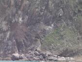2014.06.16~18東北角海岸宜蘭賞鯨豚(五):賞鯨豚&龜山島-012.JPG
