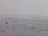 2014.06.16~18東北角海岸宜蘭賞鯨豚(五):賞鯨豚&龜山島-081.JPG