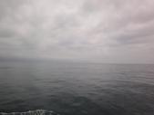 2014.06.16~18東北角海岸宜蘭賞鯨豚(五):賞鯨豚&龜山島-155.JPG