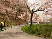 2006.04.17~21橫濱高峰會:DSC01035.JPG