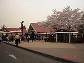 2006.04.17~21橫濱高峰會:DSC01058.JPG