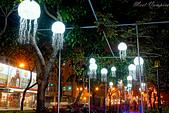 2020屏東綵燈節:DSC02276.jpg