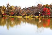 輕井澤_中輕_鹽澤湖:_MG_8203_a_b.jpg