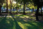 台北市大安森林公園_光影:_MG_9463_a_b.jpg