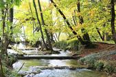 上湖區_十六湖國家公園 Plitvice Lakes N.P_克羅埃西亞Croatia:_5D30229_b.jpg