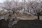 日本夙川公園:_MG_1557_b.jpg