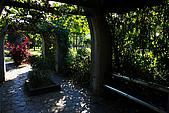 台北市大安森林公園_光影:_MG_9420_a_b.jpg