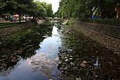 新竹市一角落:_MG_4636_b.jpg