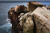 東北角海岸:_MG_6879_1_a_b.jpg