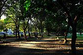 台北市大安森林公園_光影:_MG_9467_a_b.jpg