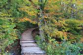 上湖區_十六湖國家公園 Plitvice Lakes N.P_克羅埃西亞Croatia:_5D30361_b.jpg