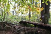 上湖區_十六湖國家公園 Plitvice Lakes N.P_克羅埃西亞Croatia:_5D30380_b.jpg