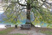 上湖區_十六湖國家公園 Plitvice Lakes N.P_克羅埃西亞Croatia:_5D30397_b.jpg