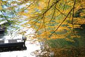 上湖區_十六湖國家公園 Plitvice Lakes N.P_克羅埃西亞Croatia:_5D30406_b.jpg