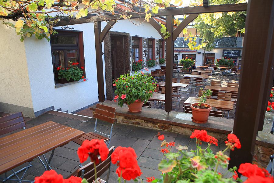 德國_萊茵河上的珍珠_蘆荻哈姆小鎮:_5D32068_b.jpg