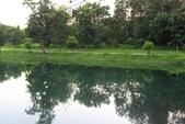 台東_琵琶湖_美麗的倒影:_D6A9038_b.jpg