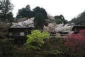 保津川_日本京都嵐山:_MG_2082_b.jpg