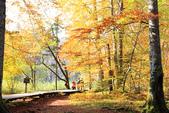 上湖區_十六湖國家公園 Plitvice Lakes N.P_克羅埃西亞Croatia:_5D30267_b.jpg