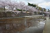 日本夙川公園:_MG_1566_1_b.jpg