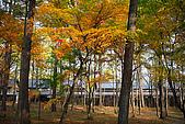 輕井澤_中輕_石頭教堂:_MG_8423_a_b.jpg
