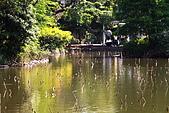 植物園_太陽:_MG_0081_1.JPG