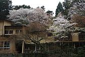 保津川_日本京都嵐山:_MG_2085_b.jpg
