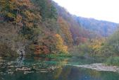 上湖區_十六湖國家公園 Plitvice Lakes N.P_克羅埃西亞Croatia:_5D30368_b.jpg