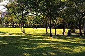 台北市大安森林公園_光影:_MG_9427_a_b.jpg