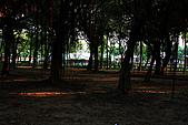 台北市大安森林公園_光影:_MG_9485_a_b.jpg